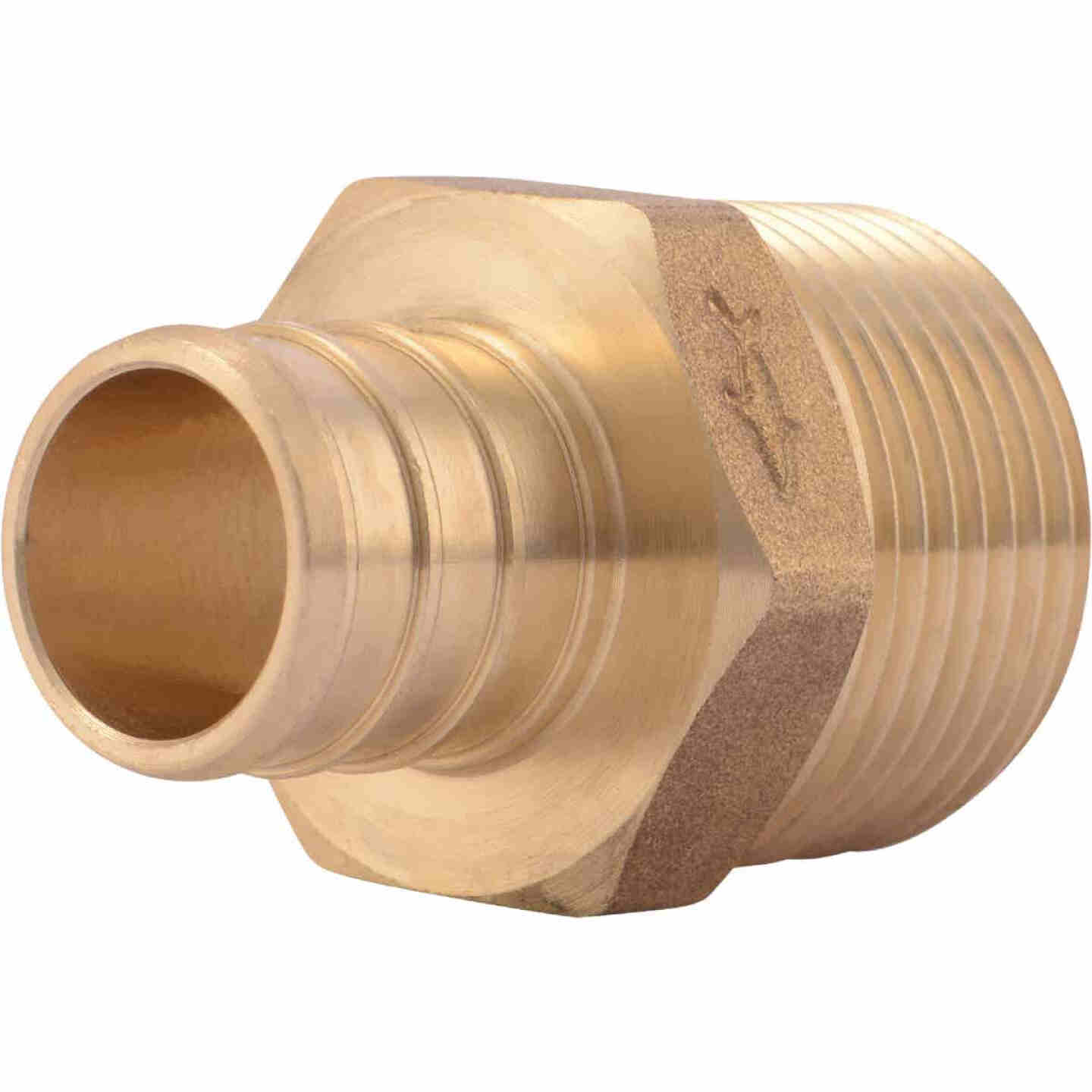 SharkBite 3/4 In. CF x 3/4 In. MPT Brass PEX Adapter Image 1
